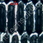 Cellstore image showing dirty roller with plugged cells and wear